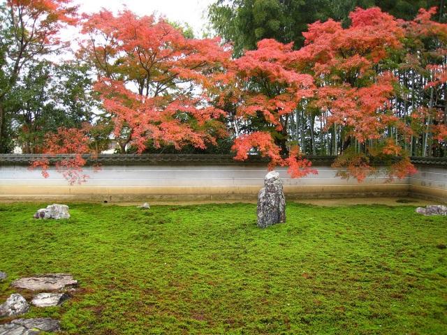 紅葉の石庭
